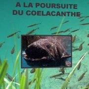 In search of the Coelacanth