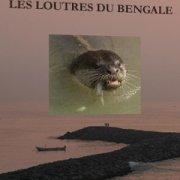 Les loutres du Bengale