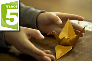 The Origami Code recieves the TFVI best selling documentary of the year prize