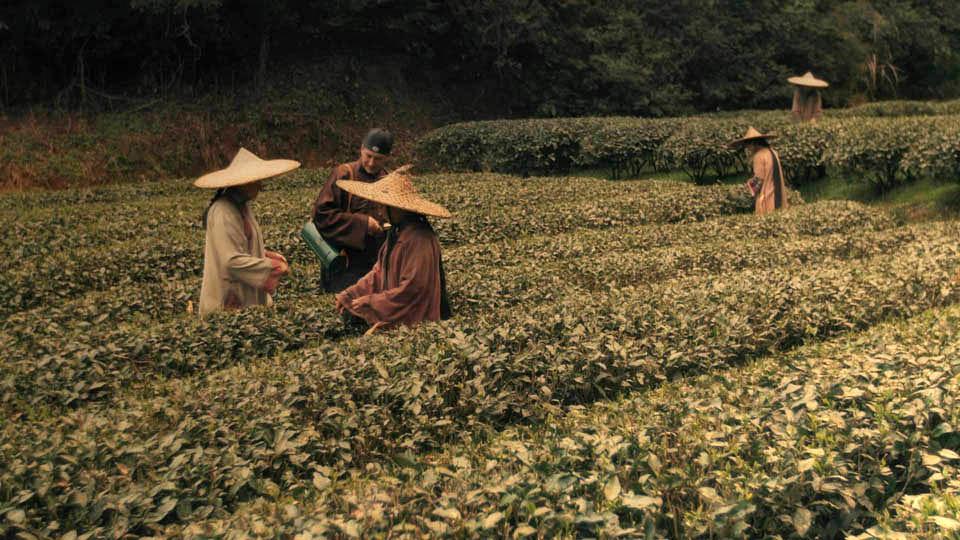 LES AVENTURES DE ROBERT FORTUNE ou comment le thé fut volé aux Chinois