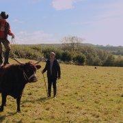 Au p'tit bonheur la France (4) Épisode 1 – Danse avec les vaches