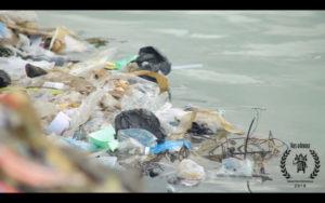 """""""The plague of plastic bags"""" at Vues d'Afrique festival"""